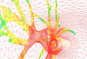 Le maillage graphique d'AirWays, logiciel de la plateforme BioMICA.