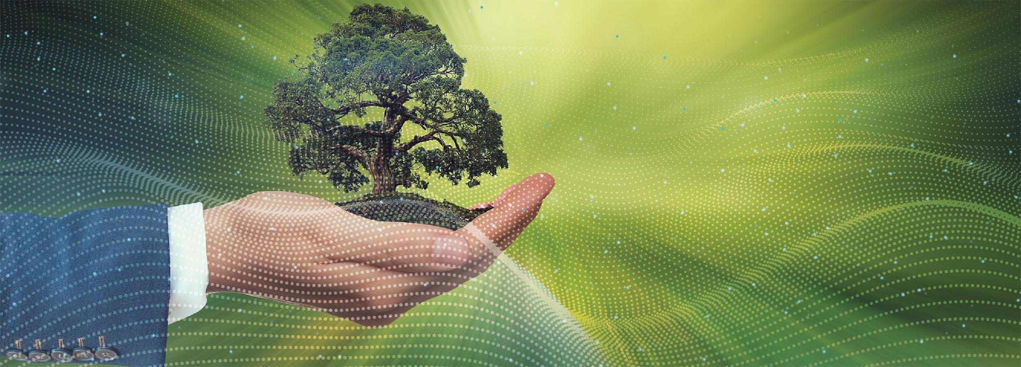 Ingénieur Généraliste dans le numérique – Parcours Environnement